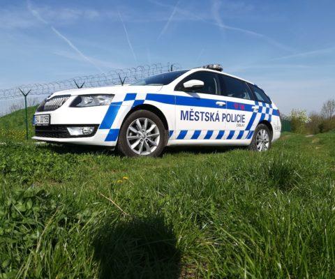 Výběrové řízení:STRÁŽNÍK MĚSTSKÉ POLICIE